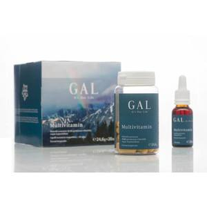 Gal Multivitamin 24, 6g+20ml kép