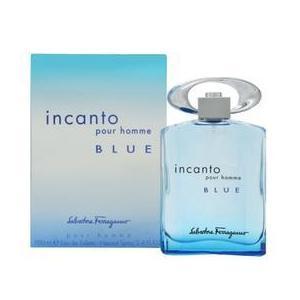 Férfi parfüm/Eau de Toilette Salvatore Ferragamo Incanto Blue pour Homme, 100ml kép