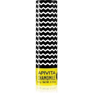 Apivita Lip Care Chamomile hidratáló ajakbalzsam SPF 15 4.4 g kép