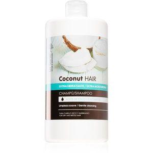 Dr. Santé Coconut hidratáló sampon száraz és törékeny hajra 1000 ml kép