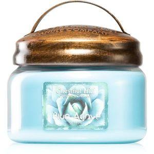 Chestnut Hill Blue Agave illatos gyertya 284 g kép